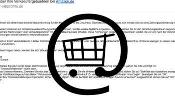 Amazon-Betrüger am Werk
