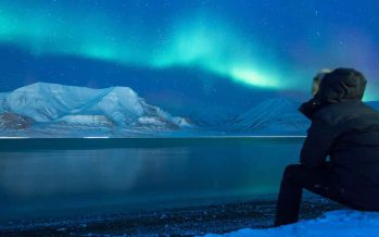 Arktis.de – Ware defekt