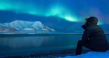 Arktis.de – Allein gelassen, Ware defekt