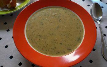 Die SPD und die braune Suppe
