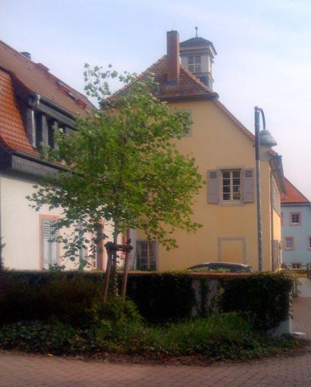 feudenheim1
