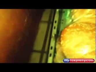 Video thumbnail for youtube video Lebende Maus in McDonalds Produkten gefilmt Dreibeinblog