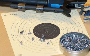 Alles was man über Luftpistolen und Luftgewehre wissen muß -1-