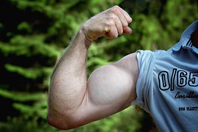 Gesund Muskeln aufbauen und trotz Abnehmen gesund bleiben