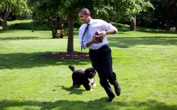 Obama-Care