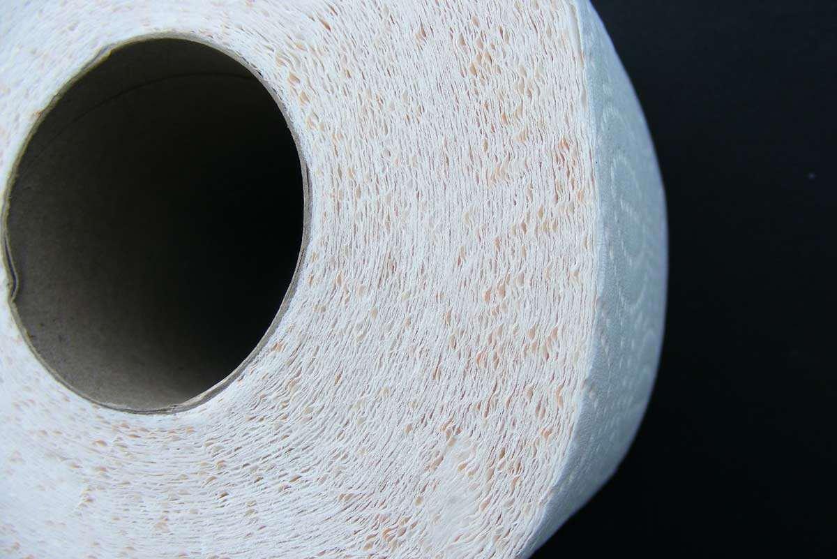 toilettenpapier-pixabay