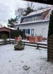 z-snow