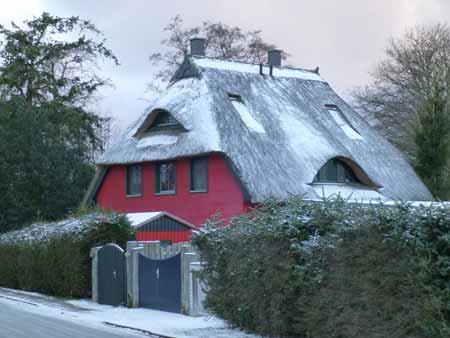 z-winter01